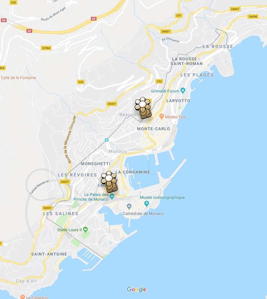 Google Maps pour trouver les boutiques du fleuriste