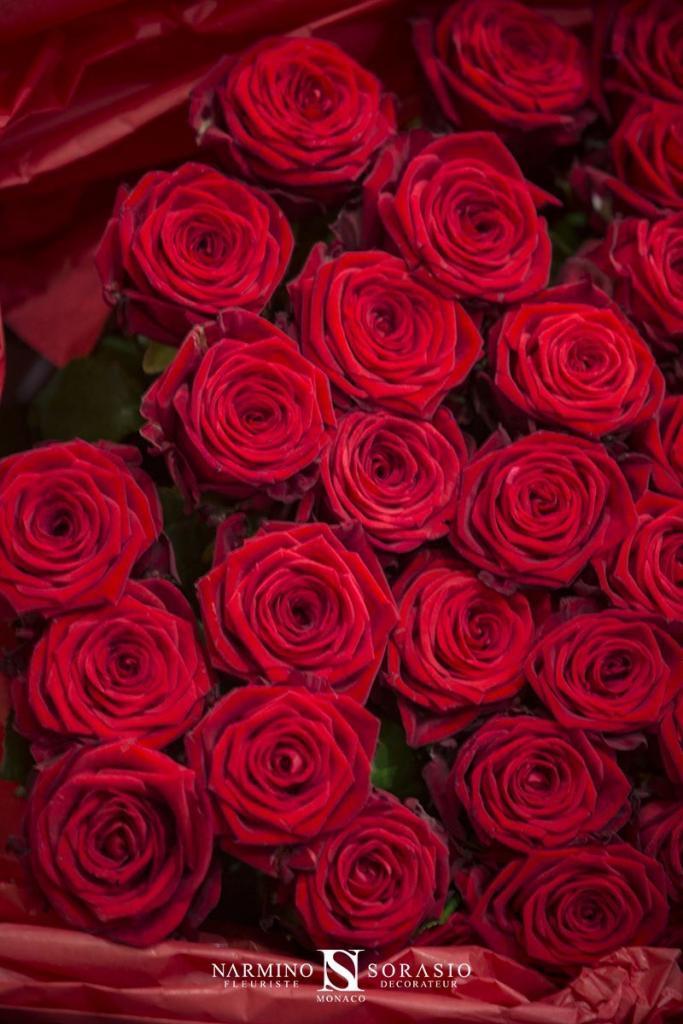 Un magnifique bouquet de roses rouges pour la Saint-Valentin